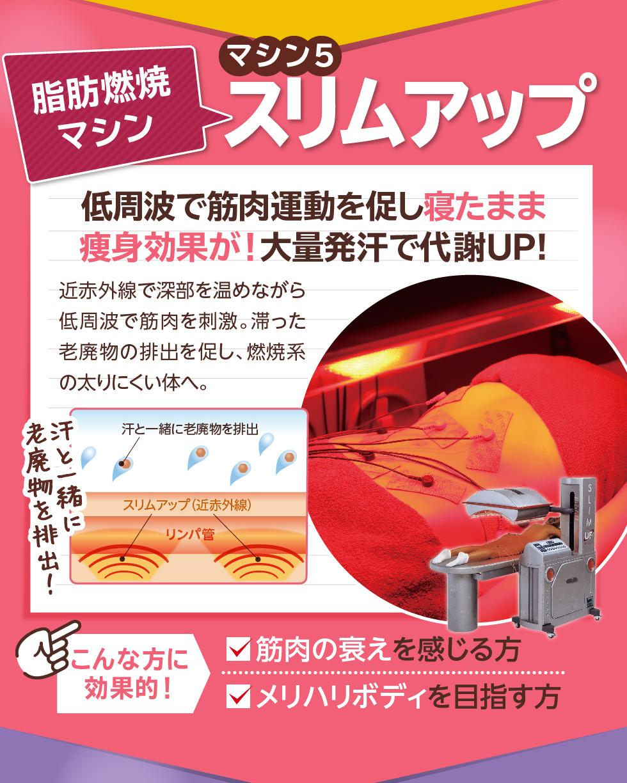 マシン5 脂肪燃焼マシン スリムアップ 低周波で筋肉運動を促し寝たまま痩身効果が!大量発汗で代謝UP!