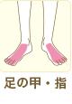 足の甲・指